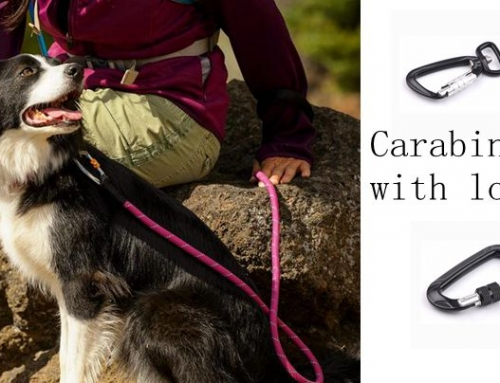 A carabiner saves your dog's life