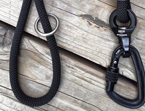 Locking  dog leash is the better way to protect your pet.